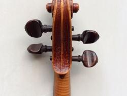 violino-carlini-1