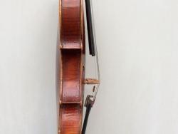 violino-carlini-6