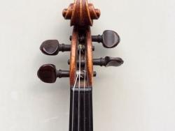 violino-carlini-7